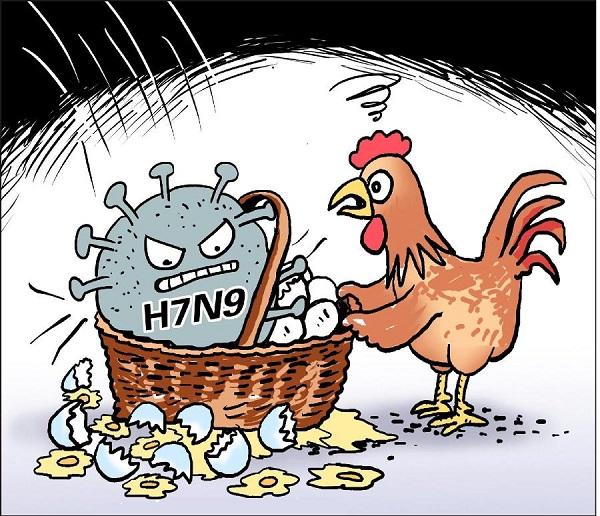 禽流感概念股股票.jpg